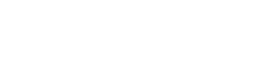 IronMarket Risk Management Logo white